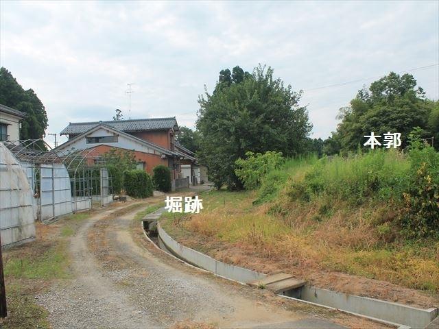 池ノ端IMG_8382