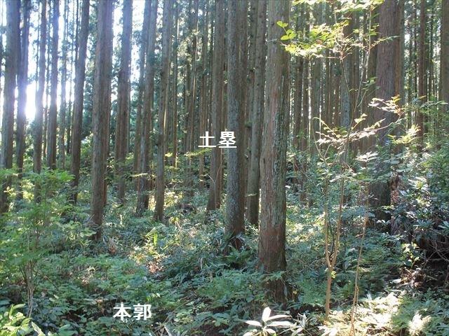 上関IMG_8361