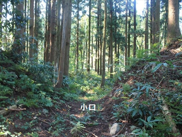 上関IMG_8362