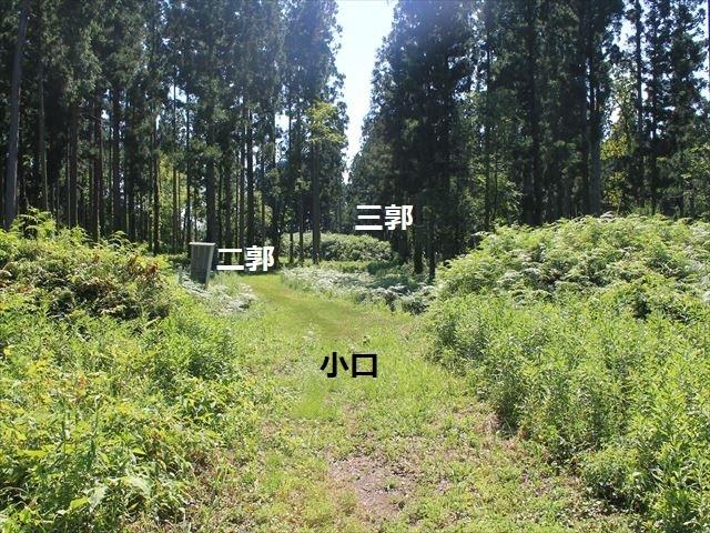 平林②IMG_8327
