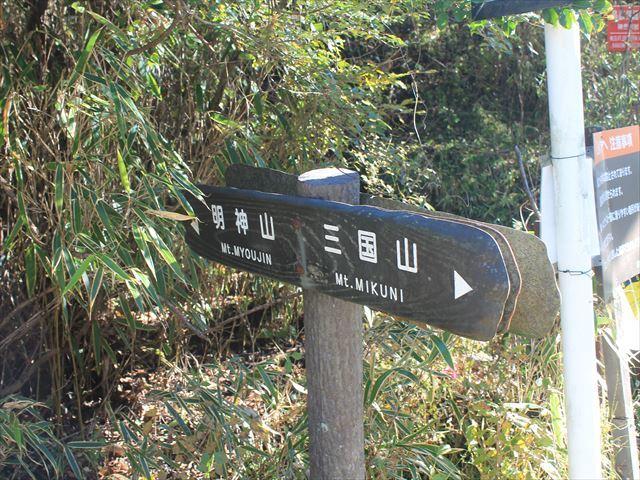 鉄砲木IMG_8637