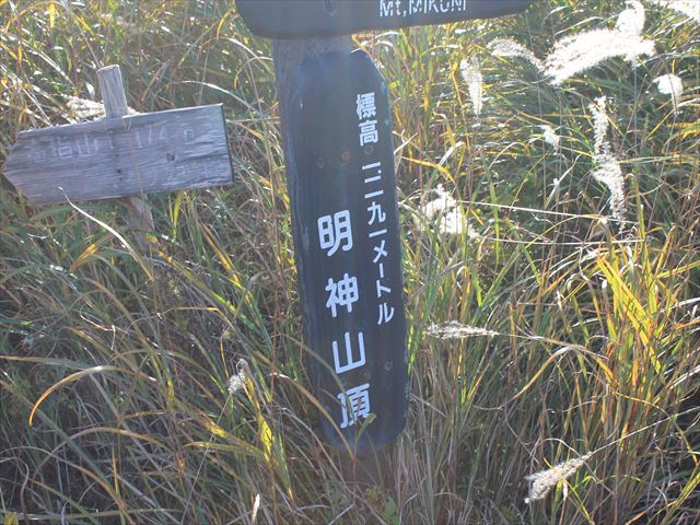 鉄砲木IMG_8654