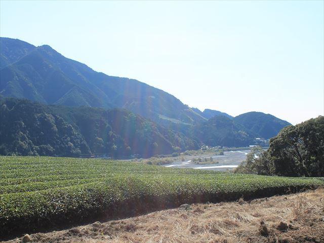 津渡野IMG_8697