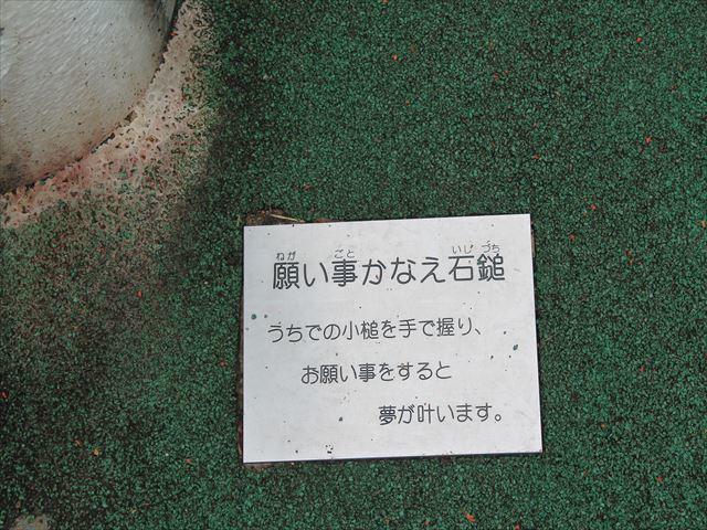 裏山ダムIMG_8812