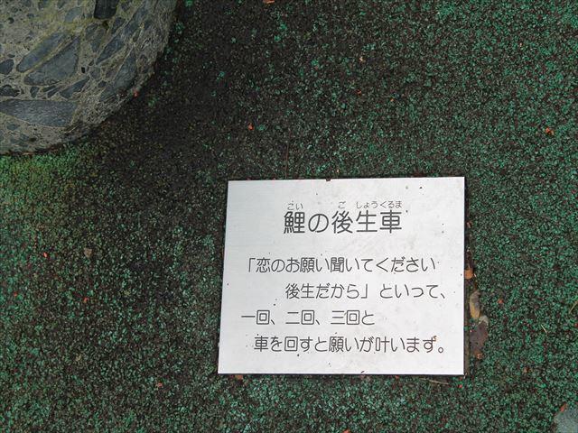 裏山ダムIMG_8816
