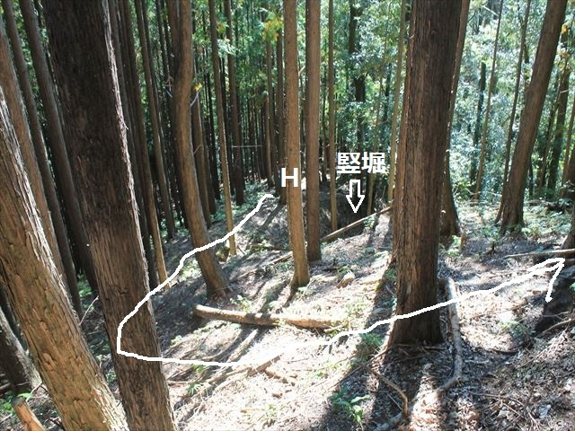 奥池ヶ谷IMG_8759