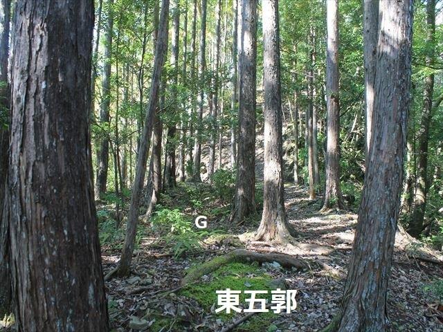 奥池ヶ谷IMG_8715