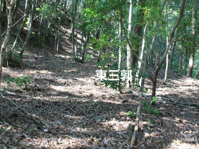 奥池ヶ谷IMG_8739