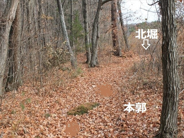 祢津支城IMG_8892