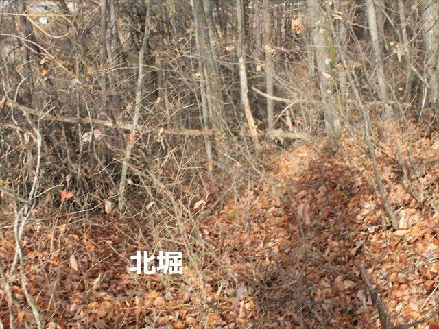 祢津支城IMG_8895