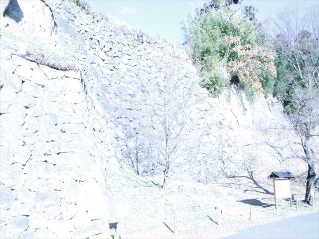 上田城Ⅱ_MG_9086
