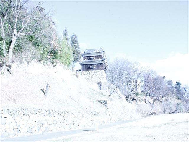 上田城Ⅱ_MG_9089