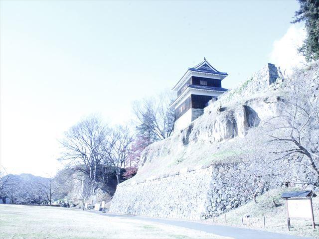 上田城Ⅱ_MG_9090