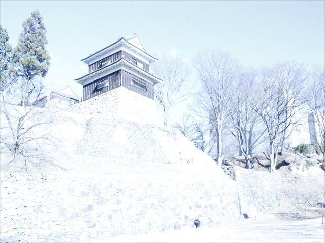 上田城Ⅲ_MG_9091