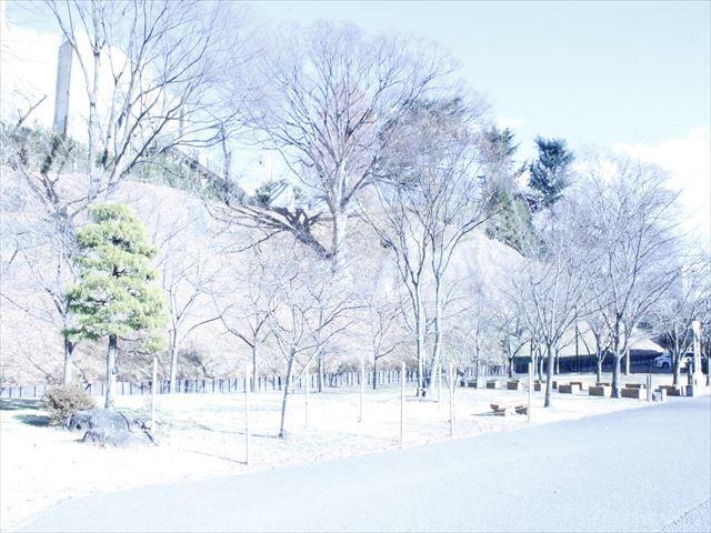 上田城Ⅲ_MG_9094