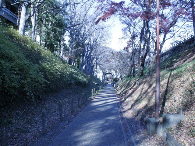上田城Ⅲ_MG_9099