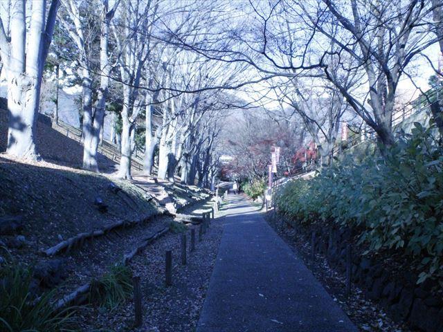 上田城Ⅲ_MG_9103