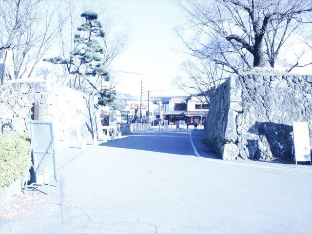 上田城Ⅲ_MG_9122