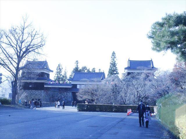 上田城Ⅲ_MG_9124