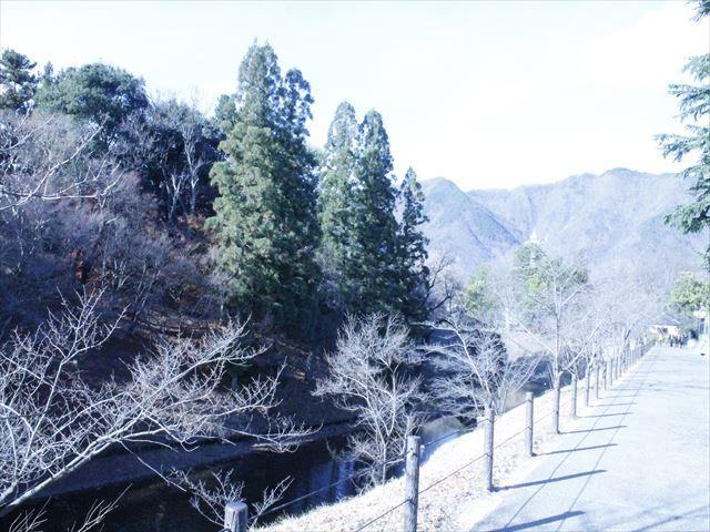 上田城Ⅲ_MG_9128