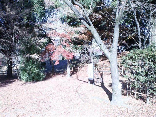 上田城Ⅳ_MG_9137