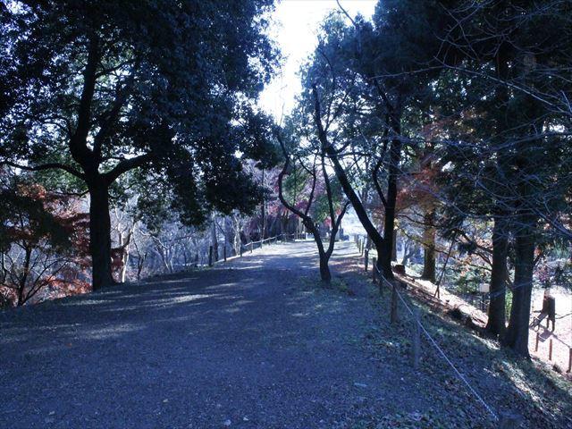 上田城Ⅳ_MG_9138