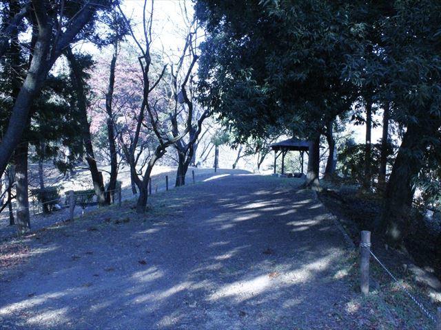 上田城Ⅳ_MG_9141