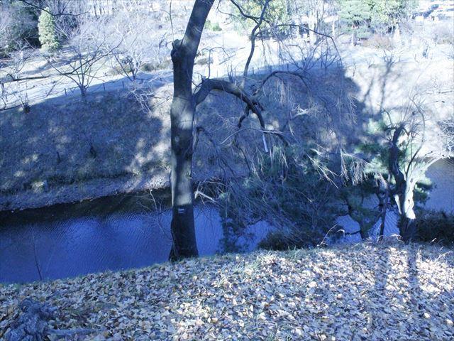 上田城Ⅳ_MG_9146