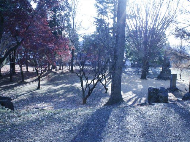 上田城Ⅳ_MG_9151