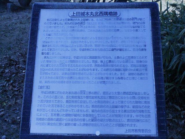 上田城Ⅳ_MG_9155