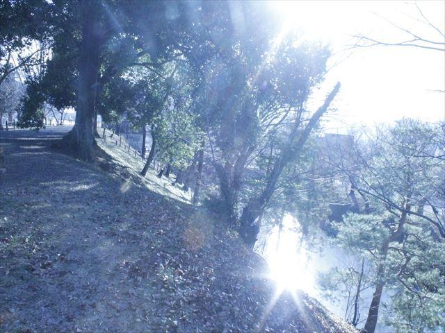 上田城Ⅳ_MG_9160