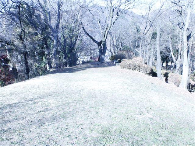 上田城Ⅳ_MG_9169