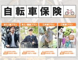 bicycle_sp_maine_vsl_title.jpg
