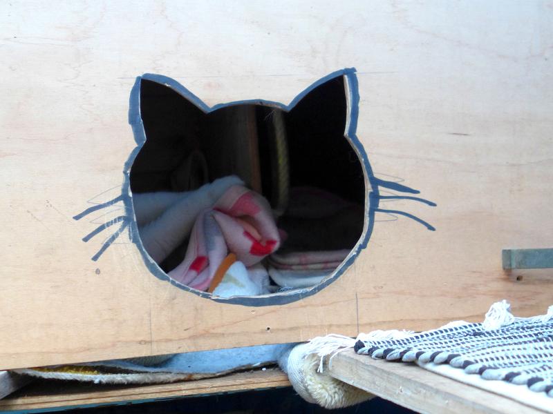 猫はハウスの白黒猫あ1