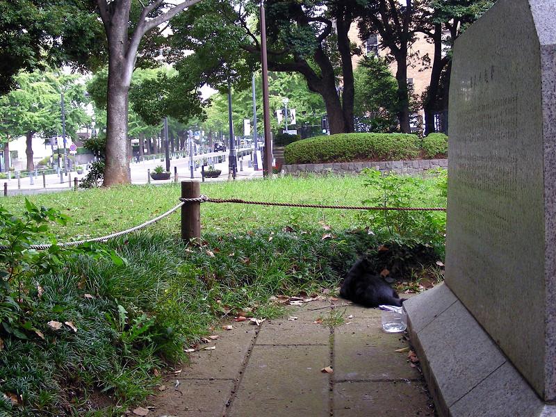 公園と石碑と黒猫1
