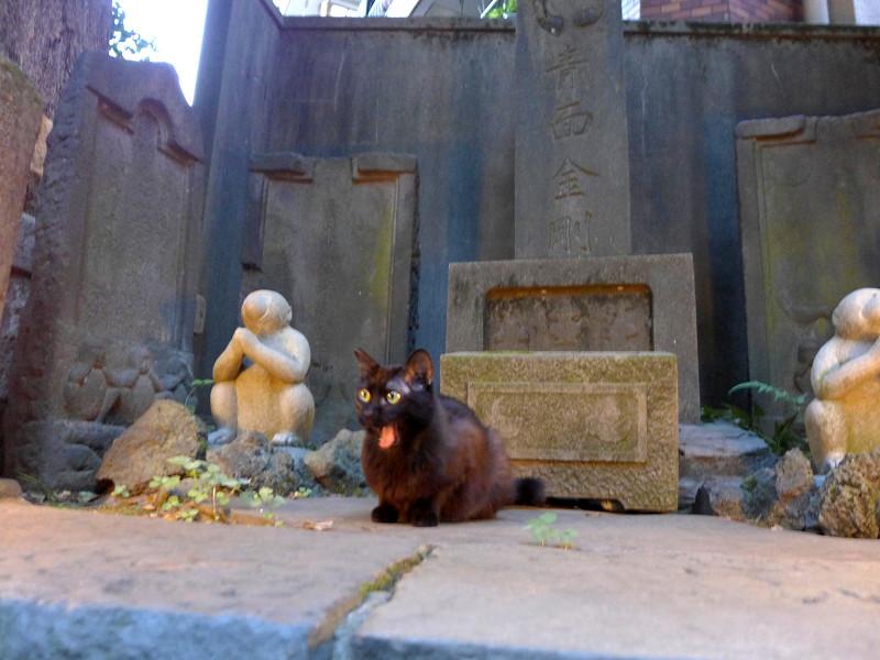石碑と黒猫2