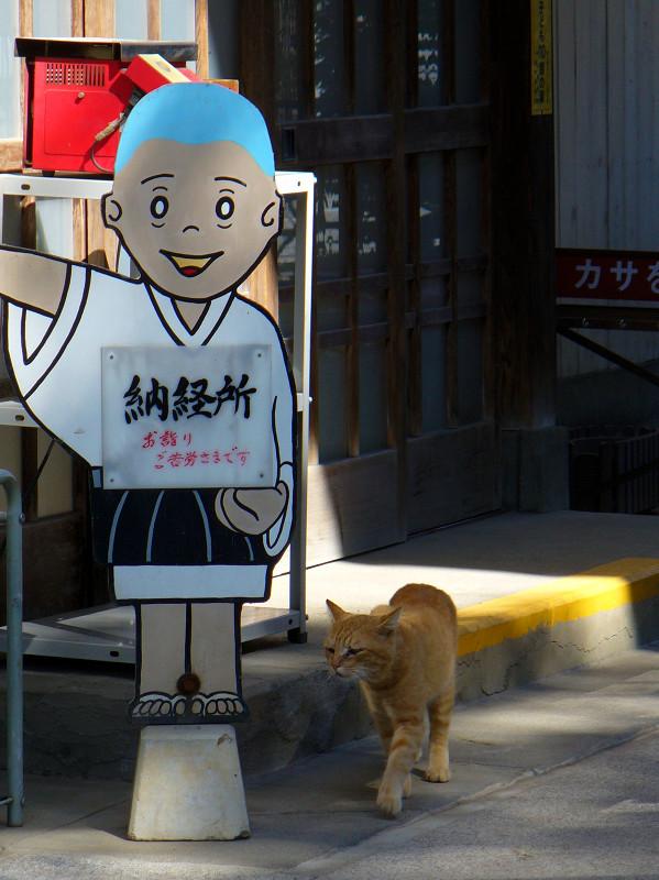 お寺の茶トラ猫2