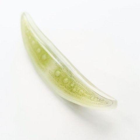 ミカヅキモ2 (5)