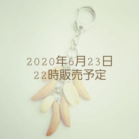 20200621_115337.jpg