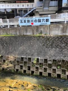 川崎市地域文化財_01
