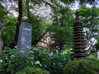 妙楽寺の紫陽花07