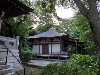 妙楽寺の紫陽花06