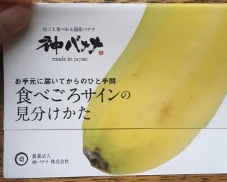 神バナナ01