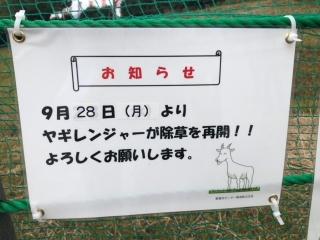 ヤギレンジャー_05