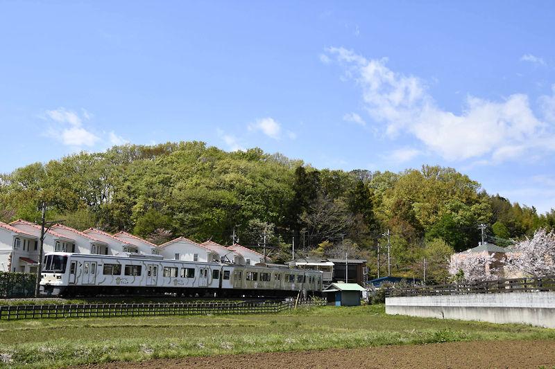 5838_ひつじ電車1
