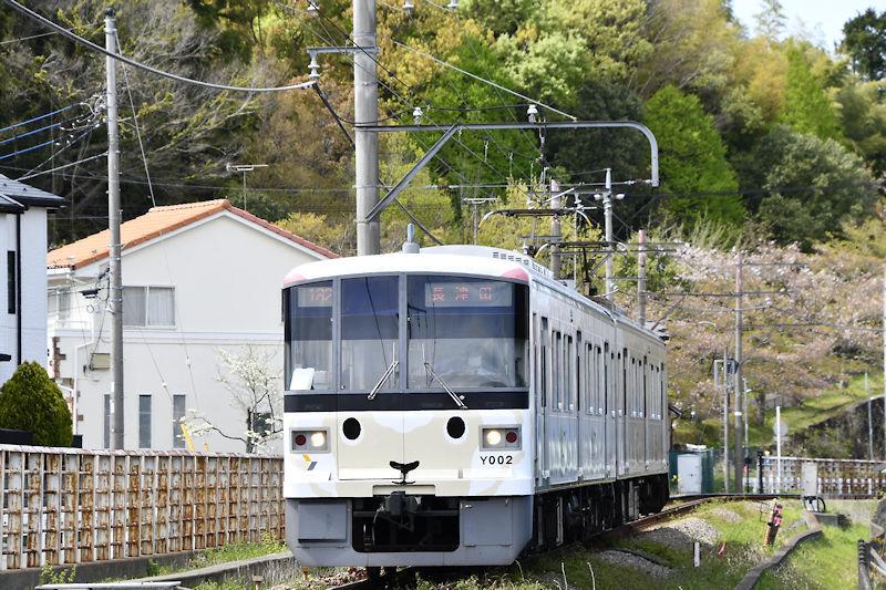 5842_ひつじ電車5