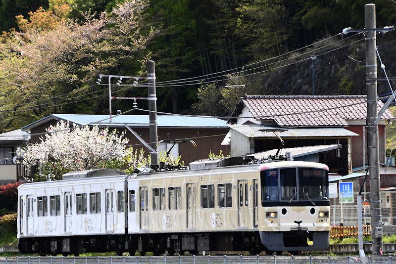 5843_ひつじ電車6