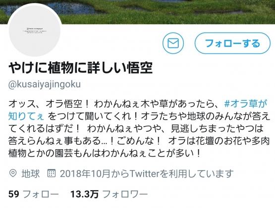 ibxKby9.jpg