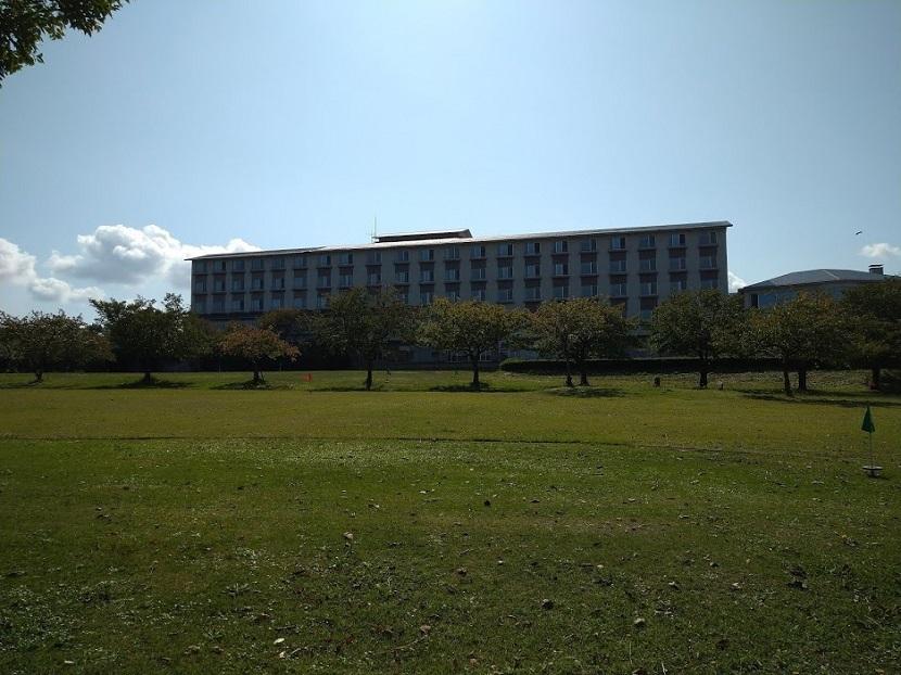 広場 芝生