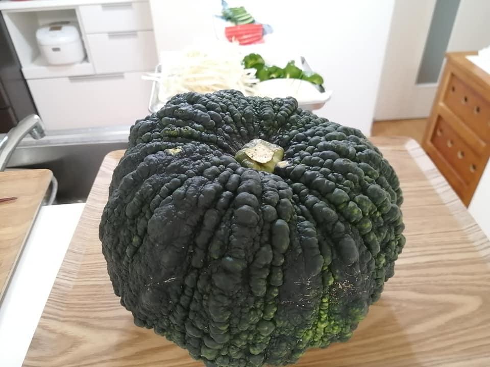 備前黒皮かぼちゃ1